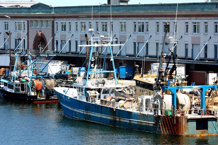 Boston Seaport - Emily Sobiecki