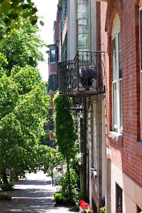 Beacon Hill Sidewalk - Emily Sobiecki