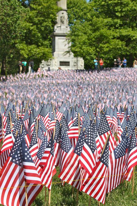 Boston's Memorial Day Flags - Emily Sobiecki
