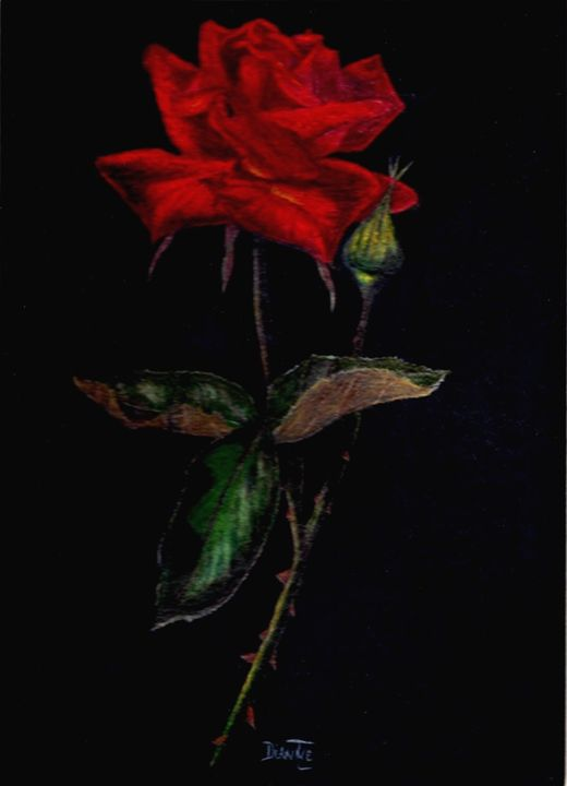 Red Rose - Dianne Tumey's Artworks