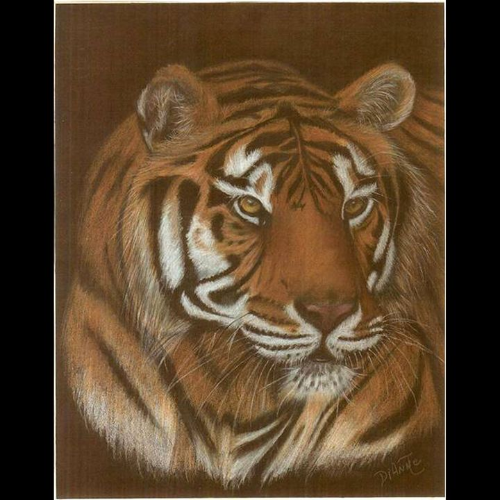Fierce - Dianne Tumey's Artworks