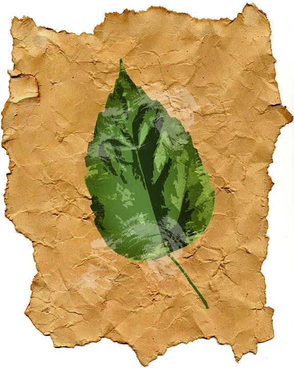 One Leaf - RJMN Illustrations