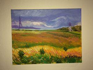 Windy Marsh
