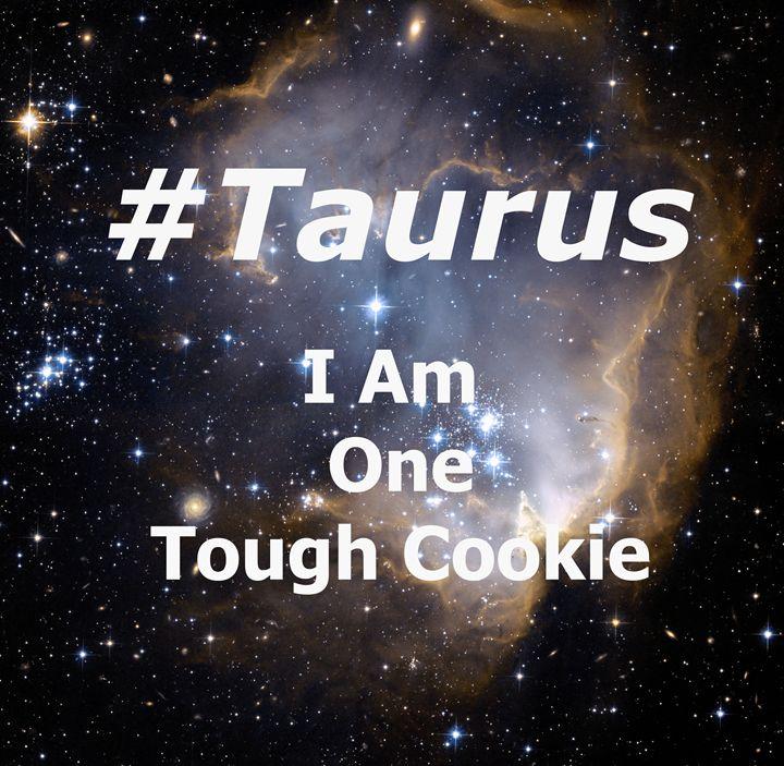 Taurus - Indie Hippie