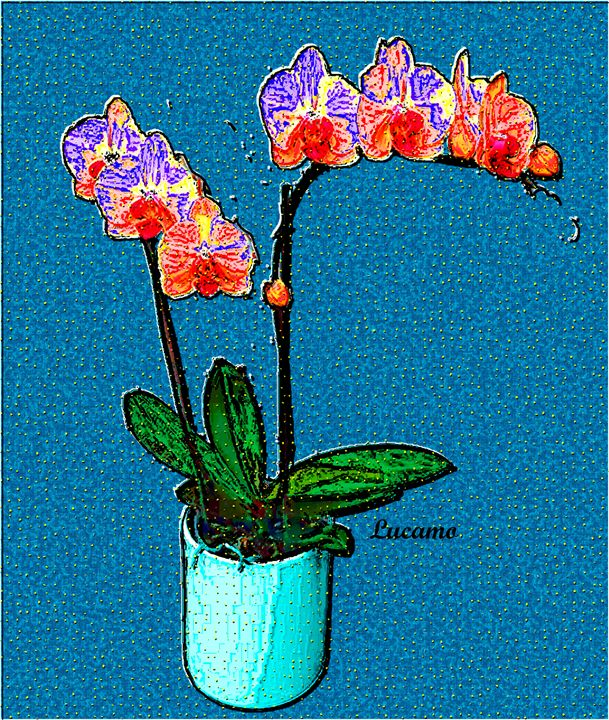 Container Plant - Lucamo: Creating with images