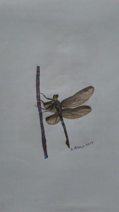 Dragonfly - Nubibeauti art