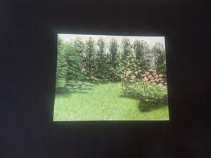 garden - Francois Dubroeucq