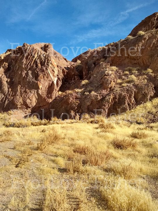Rockin' Nevada - Evol Love Fisher