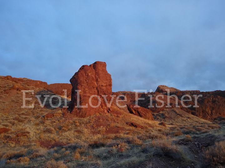 Red - Evol Love Fisher
