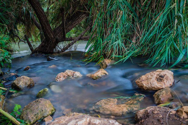 Peaceful Stream - Maor Winetrob