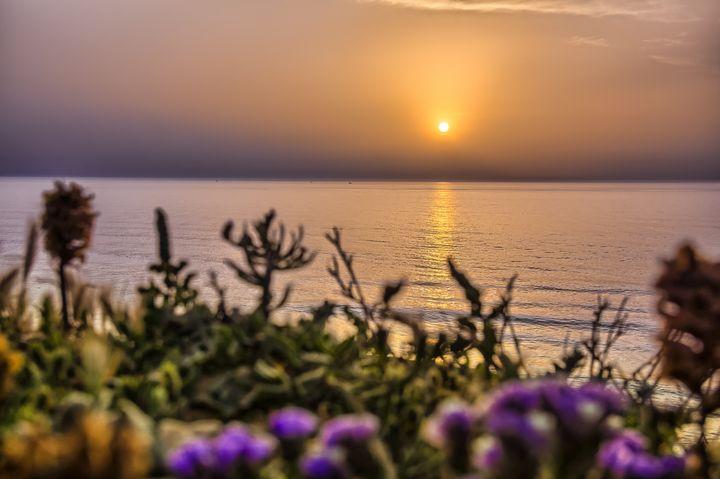 Serene golden sunset over the sea - Maor Winetrob
