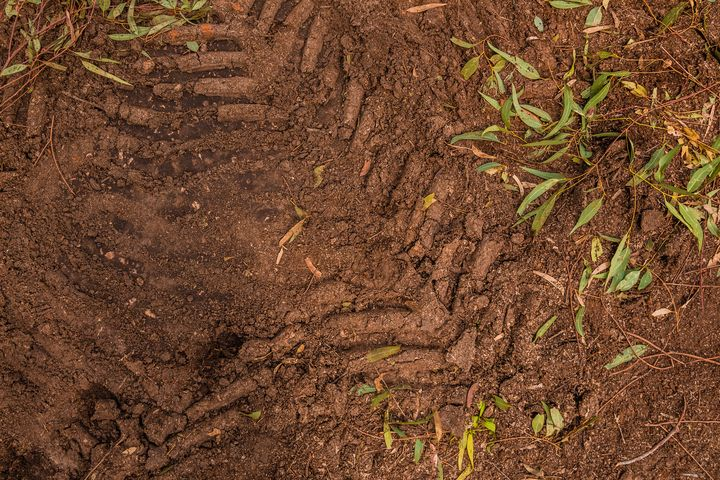 Texture of brown mud - Maor Winetrob