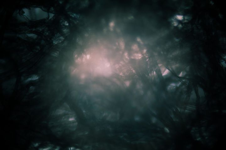 Bright light - Maor Winetrob