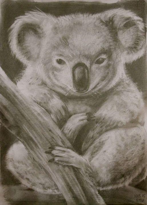 Koala - Tania's Art