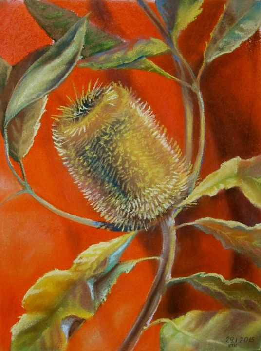 Banksia. Gold on Red. - Tania's Art