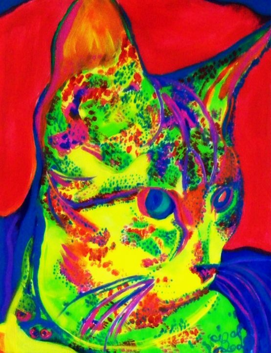 Colorful Kitten - barbara leavitt