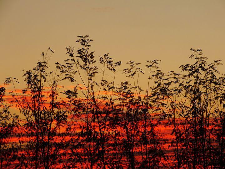 Magic sunset - Nameless