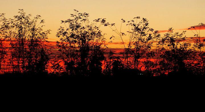 Magic sunset II - Nameless