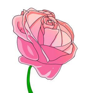Digital Hand Painted Rose