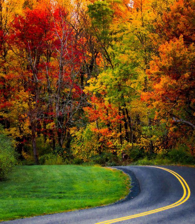 Autumn Road - S. Sarlouis Designs