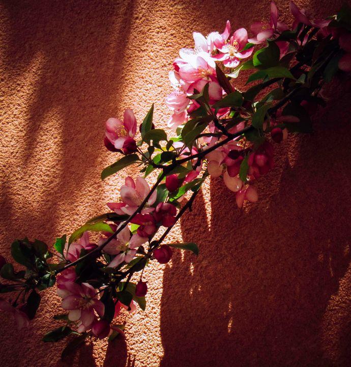 Blossom Branch - S. Sarlouis Designs
