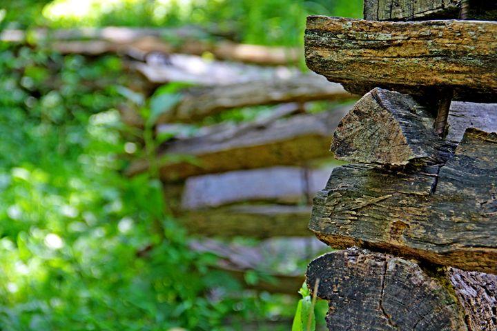 Log Fence - Falconz Eye Imagery