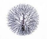 The tree of life ( Metal art )
