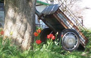 tree wagon