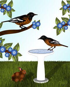 Baltimore Orioles and Birdbath - Art by Lorene