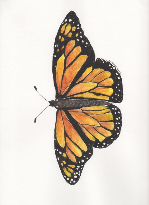 Monarch Butterfly - Artfulzen