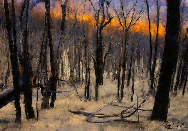 Bush Fire Devastation - Bob Durnall Art