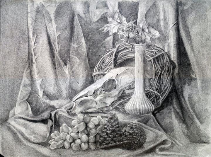 Skull still life - Kitsune Drawing
