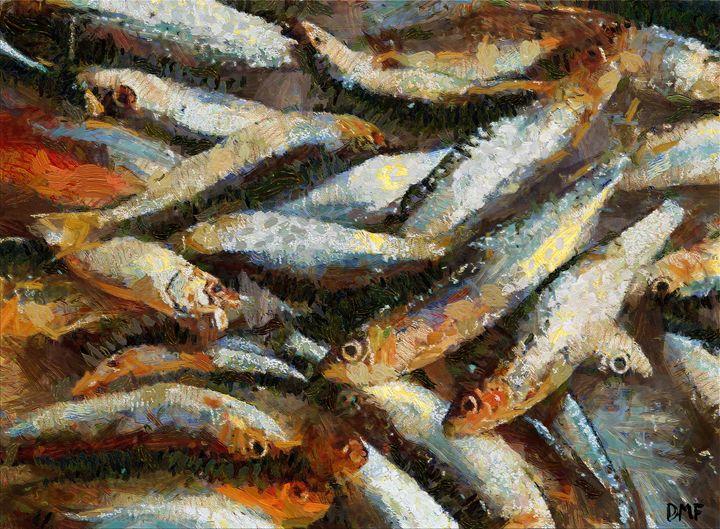 Sardines - FORTUNA ART