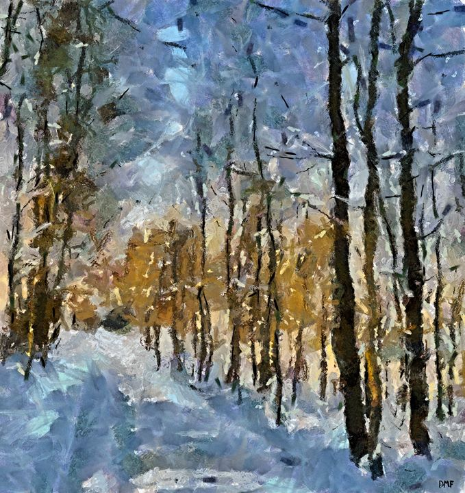 Winter morning in the forest - FORTUNA ART