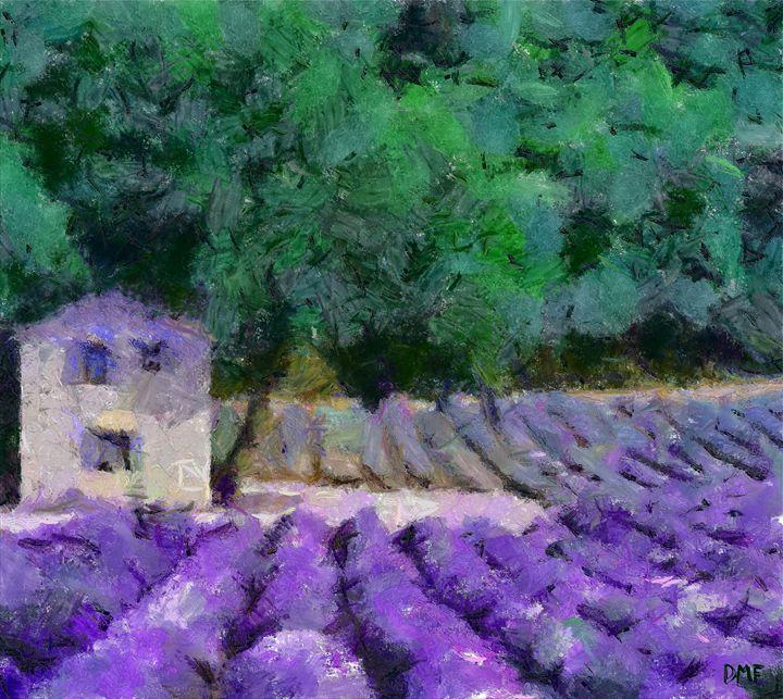 Flowering field of lavender - FORTUNA ART