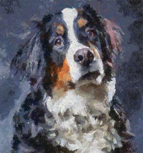 St.Bernard dog - FORTUNA ART