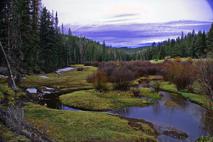 Mt Baldy Summer - Scenic Treasures, Alan Lucio Photography