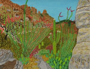 Pima Canyon in Arizona, USA - Anton's art from the heart