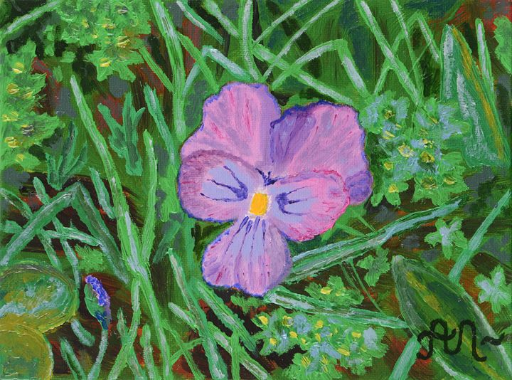 The Swiss mountain violet - Anton's art from the heart