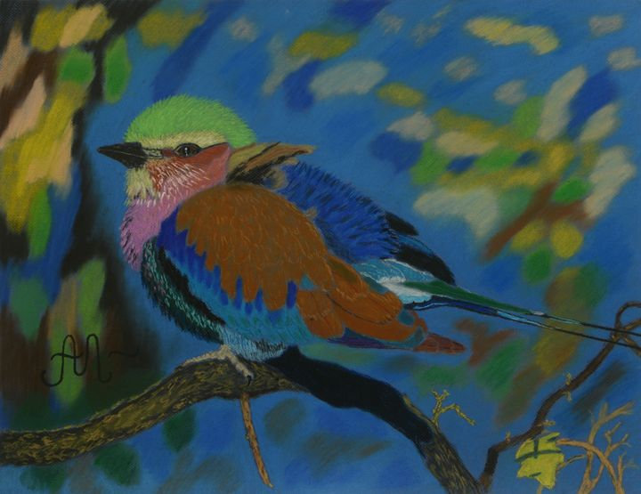 A colored South African bird - Anton's art from the heart