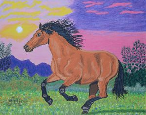 A running brown horse at sunset