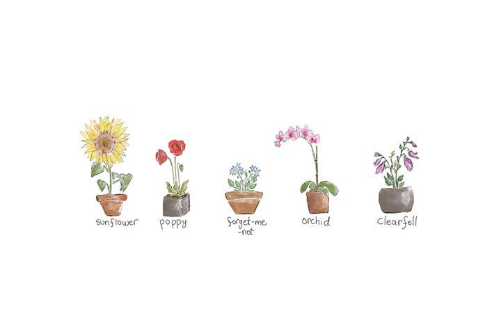 Flower Pots - HardyyBoy's Closet