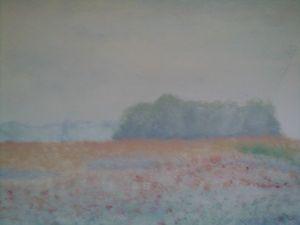 Coloured Summerfield