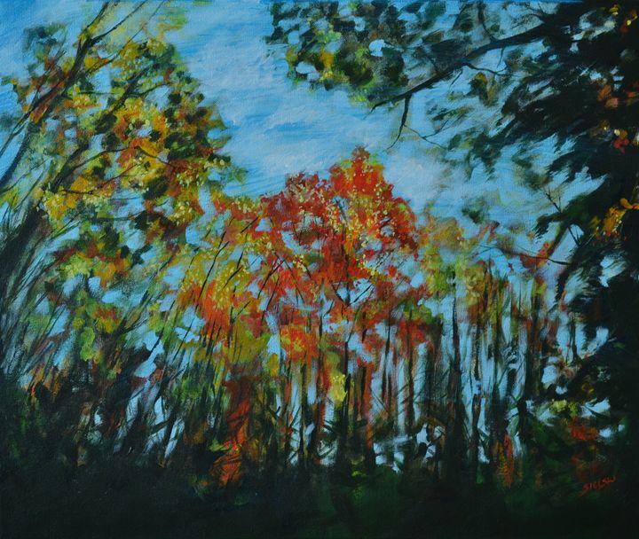 Backyard five - George Sielski