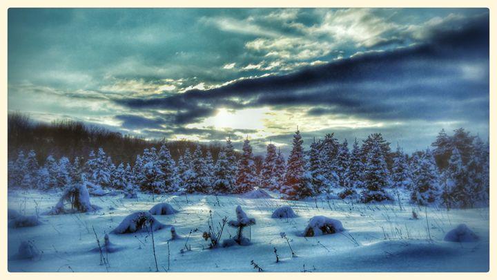 Winter Solstice - Becky Kurth