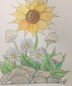 Daisy and Sun