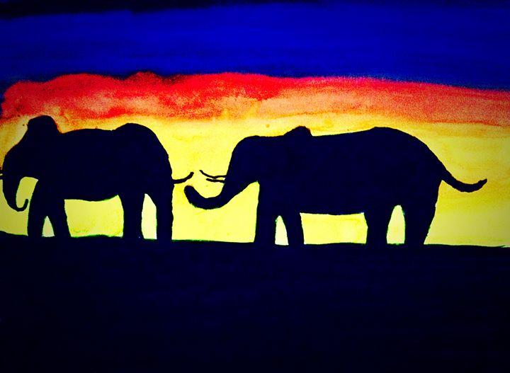 Elephant shadows - DFG