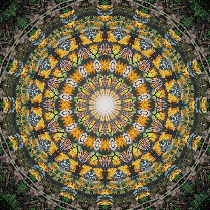 Autumn Leaves Mandala - NCL