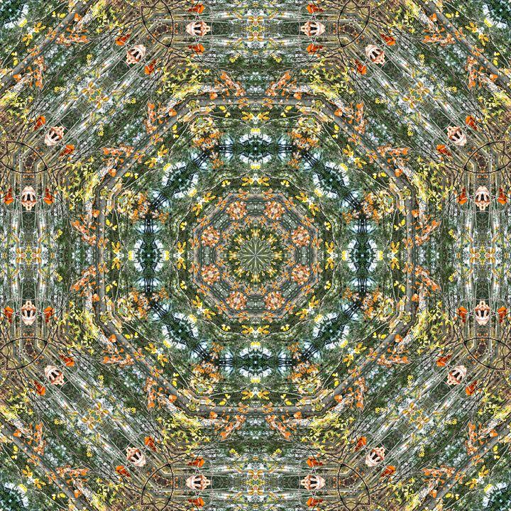Autumn Butterflies Mandala - NCL