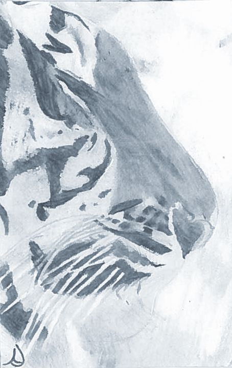 Tiger Profile - Ann's Pencil Creations